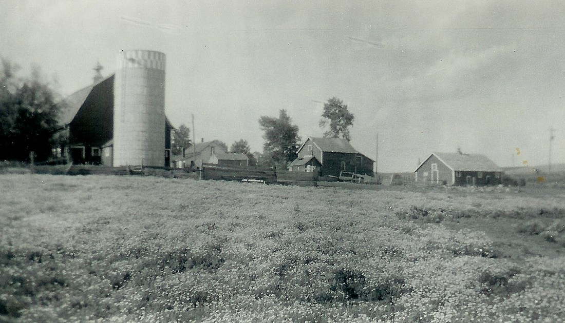 #76=Kiester farm, looking NE from field
