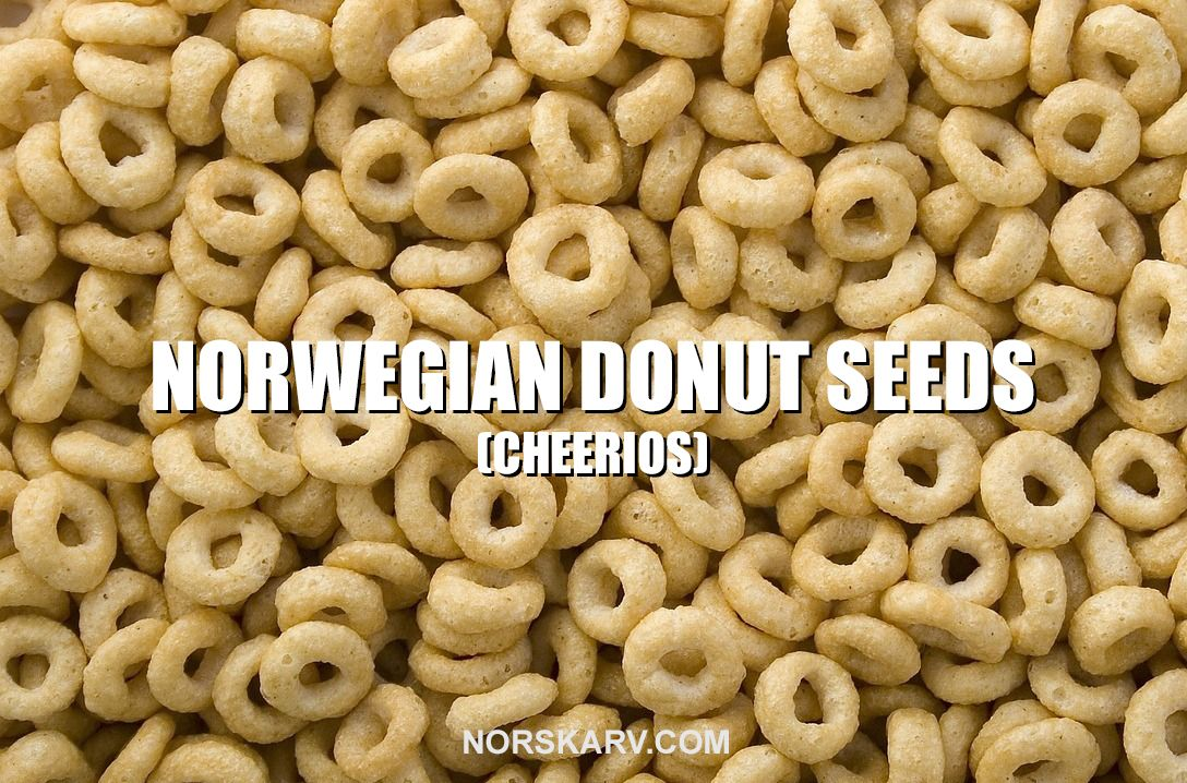 Norwegian Donut Seeds2