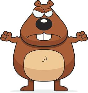 An angry cartoon beaver frowning and looking upset.