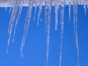 Row of long icicles