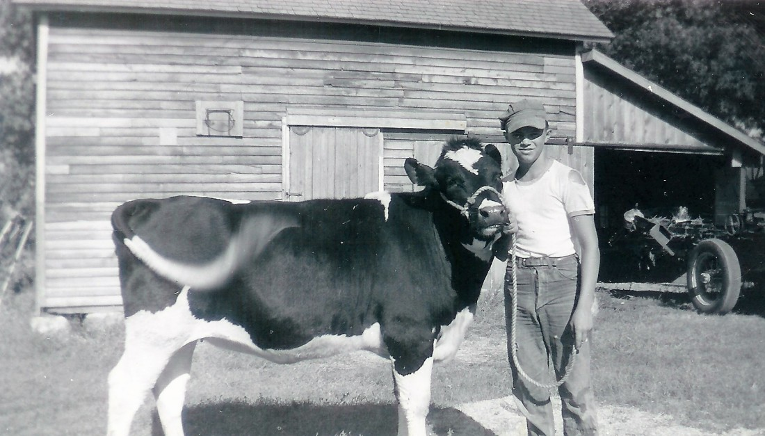 #39=Lowell with cow (circa 1960)